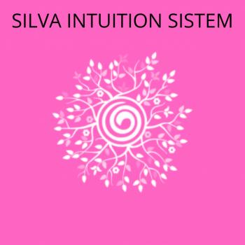 SILVA INTUITION SISTEM